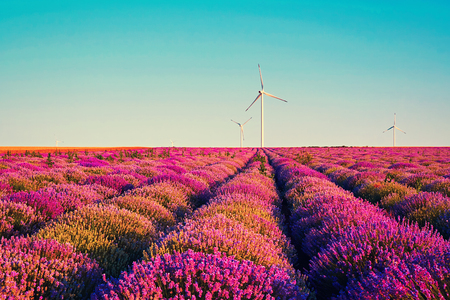 Bright lavender field at sunset. Alternative energy sources. the early spring in a wind farm close-up. Bright abstract background ideal for any design