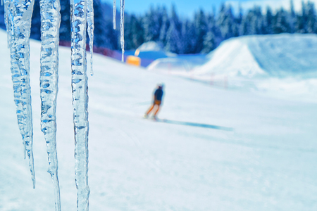 Large icicles on a coniferous tree close-up on a blurred background of mountains and snow-covered ski slopes and skiers.  Ski track. People ski on snow in the winter. Pine forest 스톡 콘텐츠