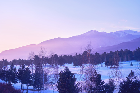 Landscape of mountains against the blue sky and white clouds. Bright sunrise over the mountain range. Forest of pine trees