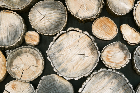 Background of spruce tree trunks. The texture of the wall is made of wood.  Bright abstract background ideal for any design