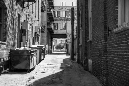 trashy: Urban alley with garbage bins
