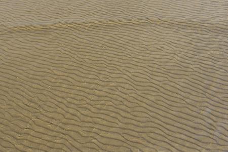 Striped under shallow beach photo