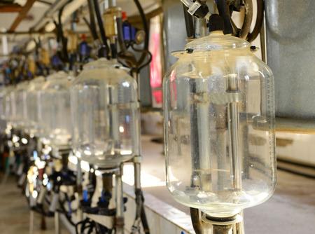 row of empty milk bottles in the milking parlour Standard-Bild