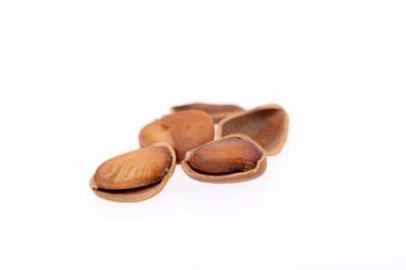 pine nuts: Pine nuts on a white background, close-up