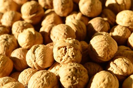 piled: Many fresh walnuts piled up together Stock Photo