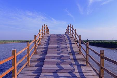 wooden bridge: Beautiful wooden bridge in wetland park