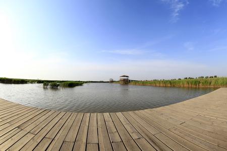 wooden bridge: The wooden bridge over the river