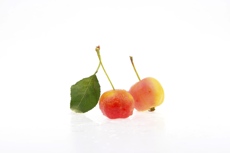 Chinese flowering crabapple fruit on a white background