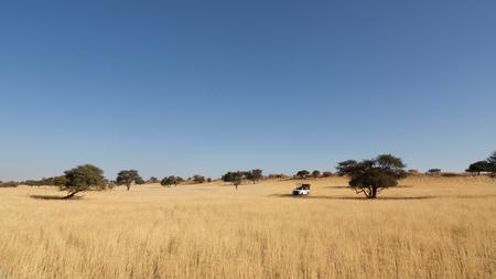 Safari with cross-country vehicle in Kalahari desert, Namibia Reklamní fotografie