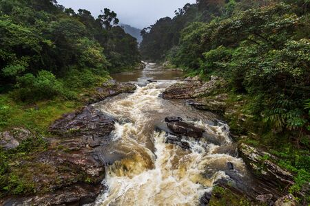 Rain forest landscape, Ranomafana, Madagascar