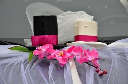Flower and two hats