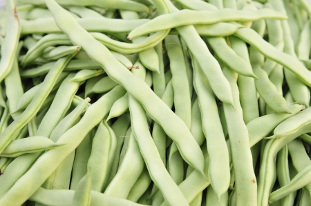 ova: Wing, annual spend around herbaceous plants, scientific name  Vigna unguiculata  Linn   Walp, commonly known as the Angle bean, JiangDou, take beans  Cowpea divided into long cowpea and rice Jiang two kinds, lobules 3, top, born lobular rhombohedrons, ova