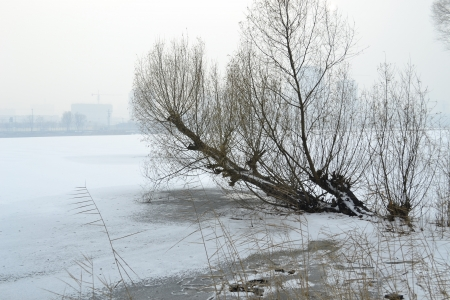 snows: It snows in winter the landscape