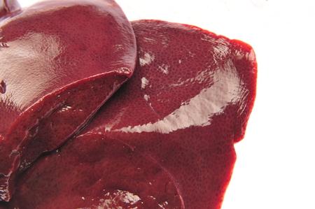crus: Liver