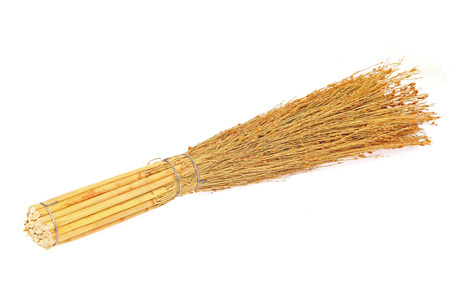 sweep: Sweep dust broom
