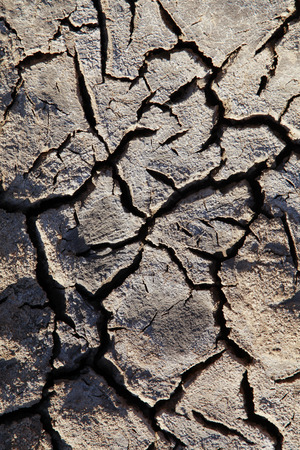 warming: Climate warming dry chapped land