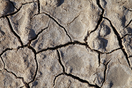 the climate: Climate warming dry chapped land