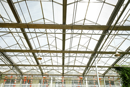 structure: Steel structure building