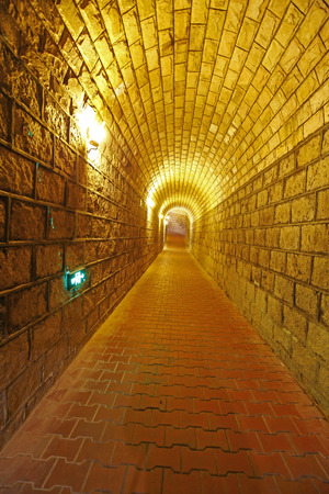basement: The basement channel Editorial