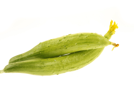 out of production: White background of cucumber Stock Photo