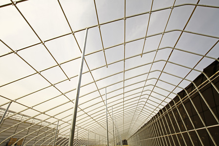 constructing: constructing the modern vegetables greenhouse