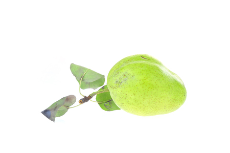 Pome is white background Stock Photo