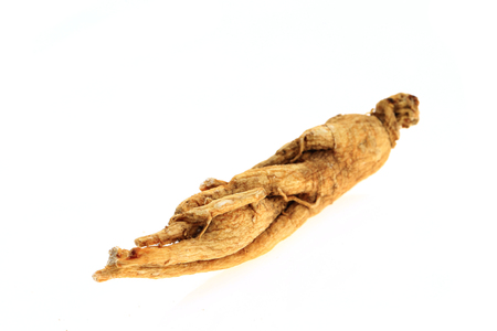 Ginseng on a white background 스톡 콘텐츠