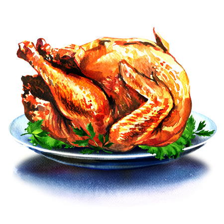 cooked meat: whole christmas dinner turkey with salad, watercolor painting on white background
