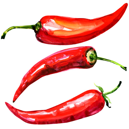 cayenne pepper: Red hot chili peppers, watercolor painting on white background Stock Photo