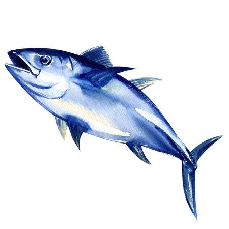 Blauwvintonijn vers geïsoleerde, waterverf het schilderen op een witte achtergrond