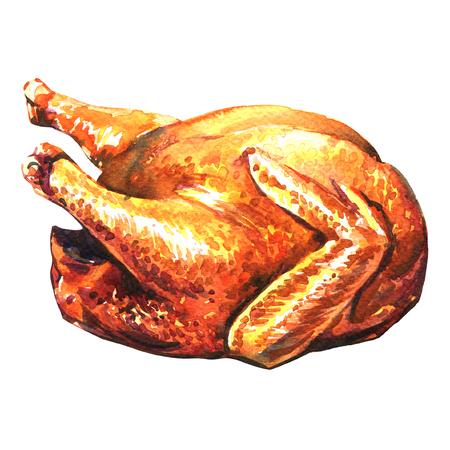 roasted turkey, watercolor painting on white background Standard-Bild