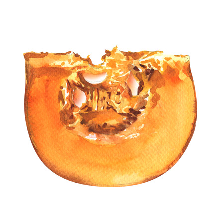 pumpkin seeds: pumpkin slice isolated, watercolor painting on white background Stock Photo