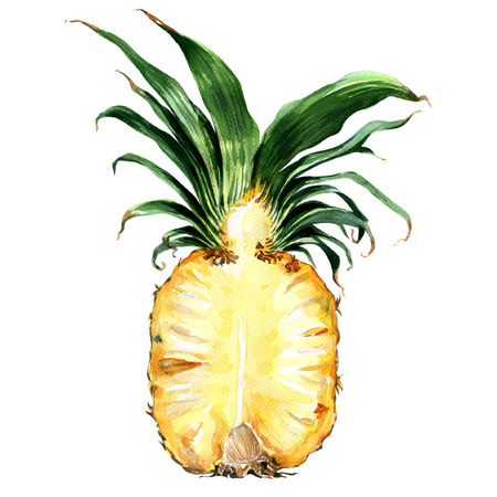 Half of ripe pineapple isolated, watercolor painting on white background Foto de archivo