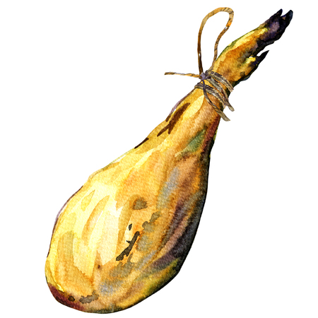 iberian: Whole leg of Spanish Iberian serrano ham, watercolor painting on white background