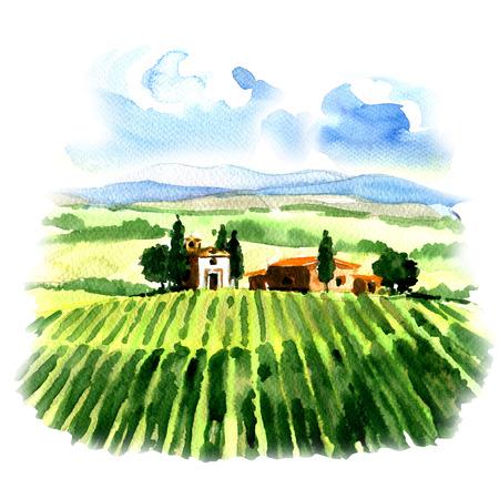 Landelijk landschap met velden wijngaard en landhuis, waterverf het schilderen op een witte achtergrond