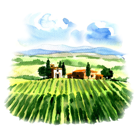 Rural landscape with fields vineyard and country house, watercolor painting on white background
