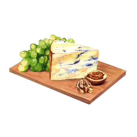 drawing board: cheese with grape and walnuts on wooden board, watercolor painting on white background