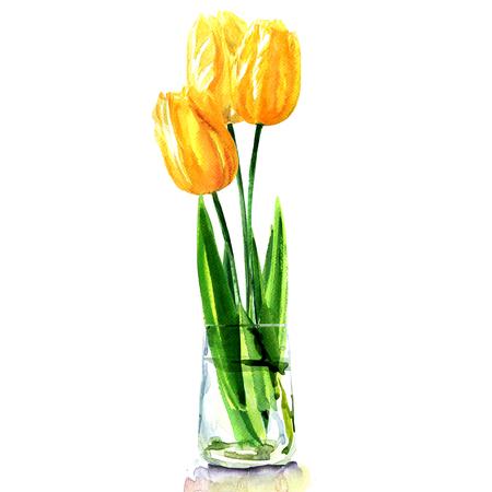 gele tulpen in transparante vaas geïsoleerd, aquarel illustratie op witte achtergrond Stockfoto