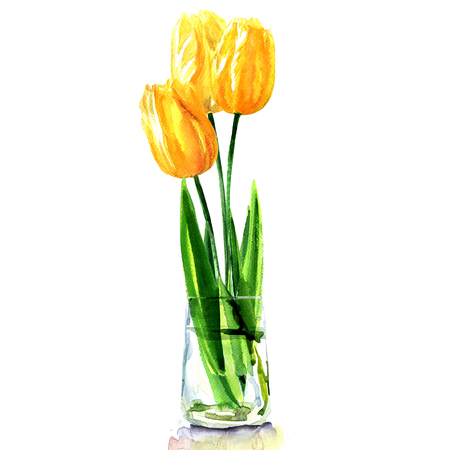 yellow tulips in transparent vase isolated, watercolor illustration on white background