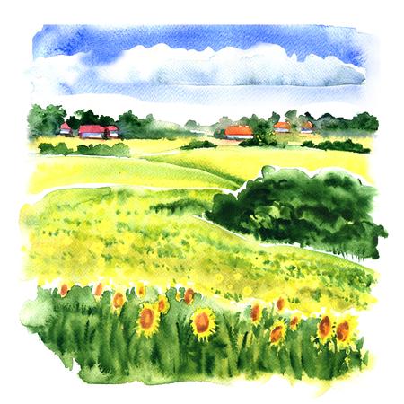ひまわり畑と曇り空、白い背景の水彩画のイラストの下の国の家の村の風景 写真素材