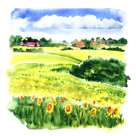 Village landscape with sunflower field and country houses under cloudy sky, watercolor illustration on white background