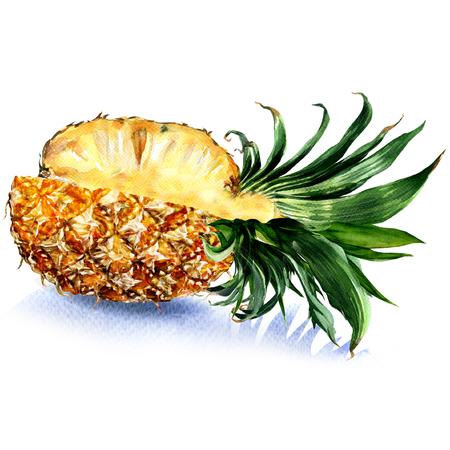 新鮮なジューシーなスライス パイナップル フルーツ、分離、白い背景の水彩画のイラスト 写真素材