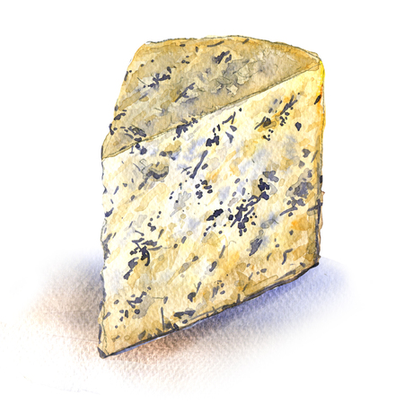 Blue cheese, Gorgonzola, slice, isolated closeup, watercolor illustration on white