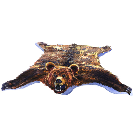 zoo dry: Bearskin, big brown wild bear pelt isolated, hunting trophy, watercolor illustration