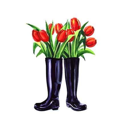 Fresh red spring tulips flowers in boots isolated, watercolor illustration on white Stock Photo