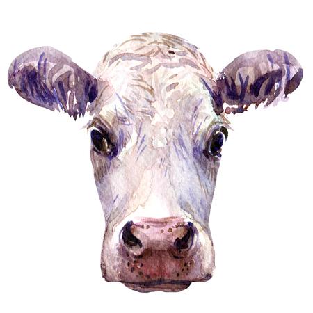 Portret van jonge koeienhoofd geïsoleerd, aquarel illustratie op wit Stockfoto