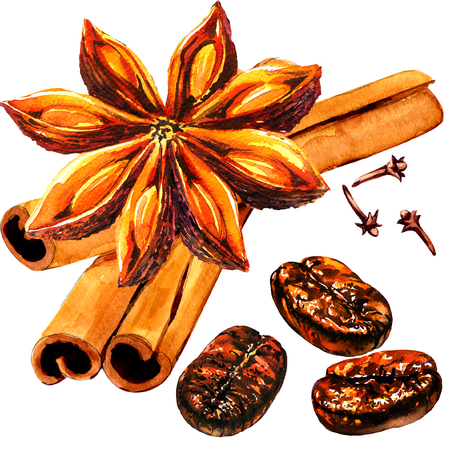 Fresh roasted coffee beans with spice, cloves, cinnamon, whole star anise and seeds, isolated, watercolor illustration