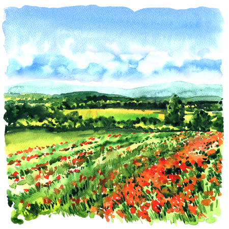 Beautiful meadow with green grass, red poppies, wild flowers. Tuscany, Italy. Poppies field. Watercolor illustration