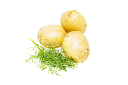 Young potato with green dill, isolated on white background. Heap of fresh organic potatoes root, close-up Stock Photo