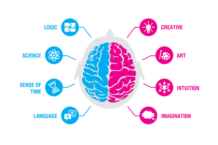 Left and right human brain concept. Logic and creative hemispheres infographics with brain and icons of science, sense of time, language, creative, art, intuition, imagination, vector illustration Çizim